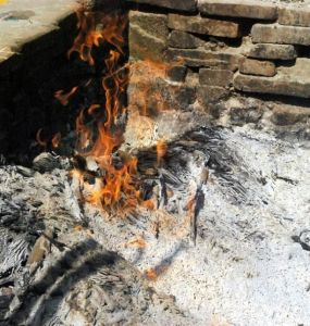 Wood Ash in Garden: 11 Practical Uses