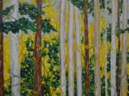 Dreese.Birch Tees.36x48