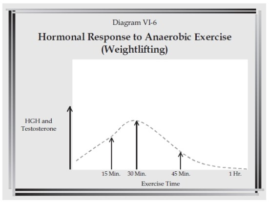 This is the coveted anabolic window when your body will MAXIMIZE any nutrient or nutrient combination whatsoever that you feed yourself. Additionally, metabolism is boosted for 24-48+ hours after a weight lifting session due to energy needs for recovery.