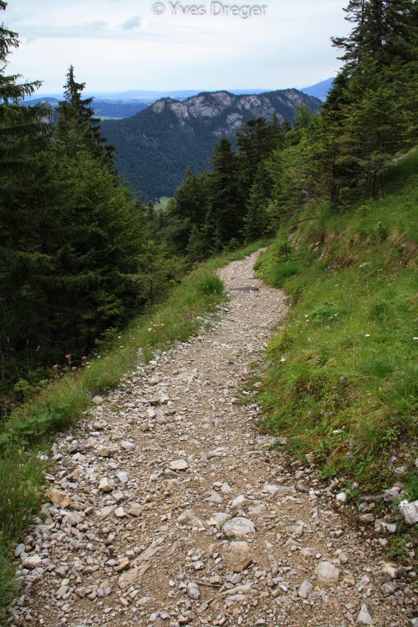 Allgäuer Alpen Rund um Füssen und Schwangau (Jahr 2012) _ 22