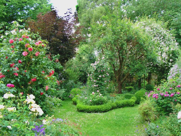 Like an old country-garden with a boxwood-hedge
