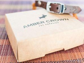 dreiraumhaus amber crown bernsteinkette hundehalsband hund-14