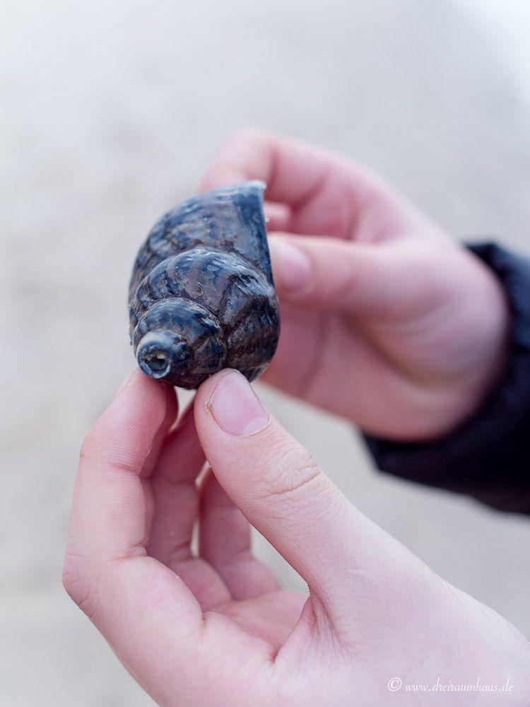 Wohin mit dem Kind in den Ferien? Kennt Ihr schon die WWF Feriencamps?blog