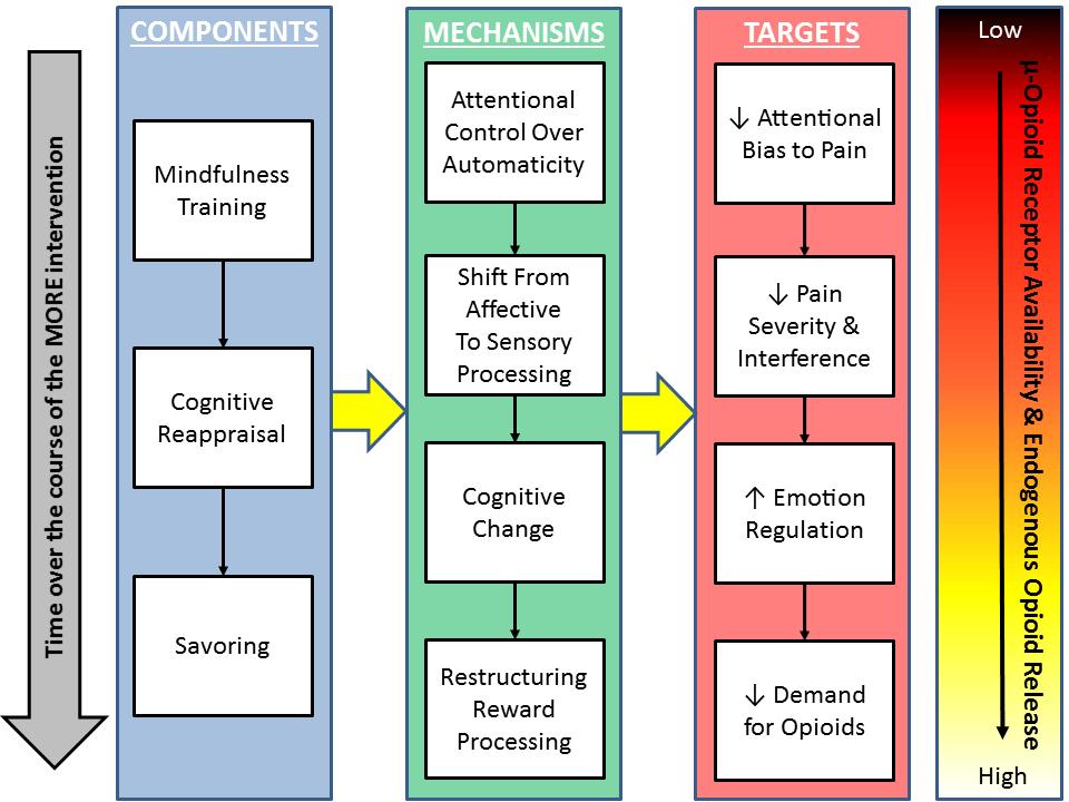 more-conceptual-framework-opioid
