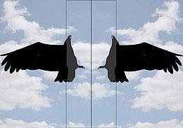 Set Vogelscheuchen Drache Mit Adlermotiv Drehpunkt Mast 7m