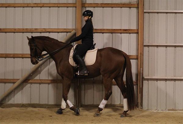 Rider Position and Balance