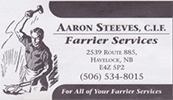 Aaron Steeves