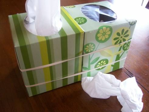 kleenex box great idea