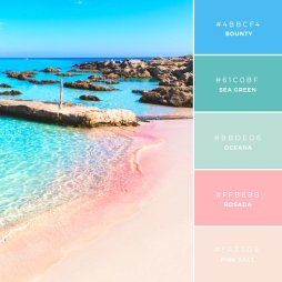 Sistas-In-Success-Canva-Colour-Palette-Cool-Pink-Sands