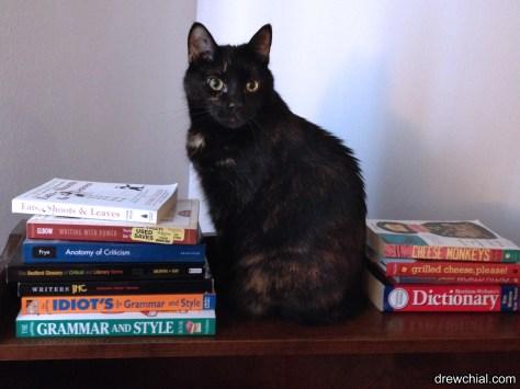 Literary Kitty learns grammar