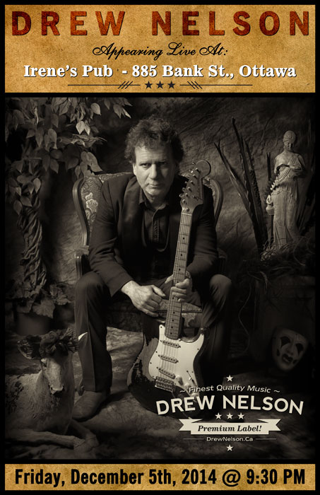 Drew Nelson - Live at Irene's, Ottawa - December 2014