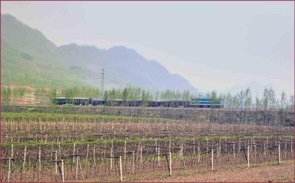 03_貨物列車3