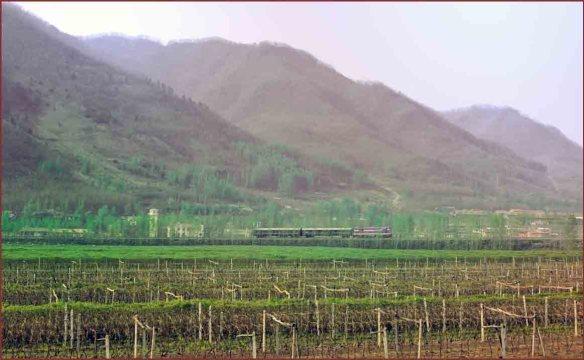 10_午後の列車1