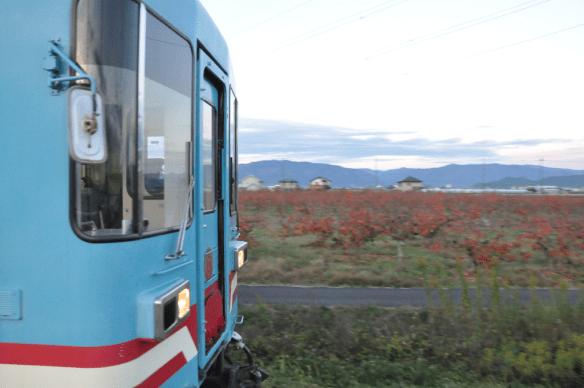 樽見鉄道DSC_6592