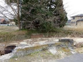 廃線跡に茂みが。どうやら祠があるようだ。