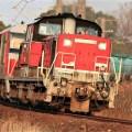 引退DD51定期貨物列車1/2021.03.16/Posted by 893-2