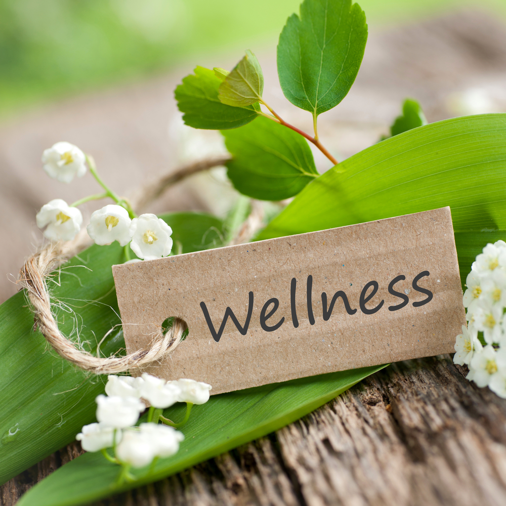 Omega Wellness Retreat Weekend: July 5-7, 2019