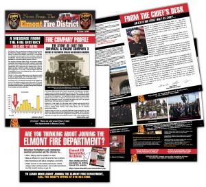 drgli elmont newsletter 4 design print work