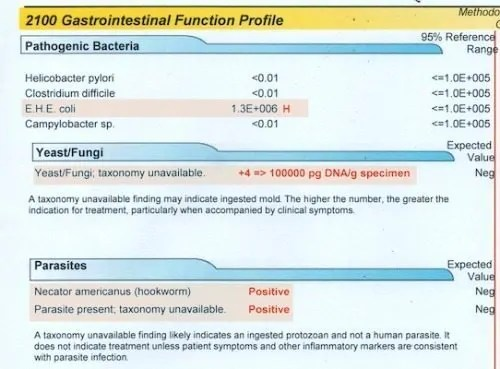 2100 gastrointestinal function profile