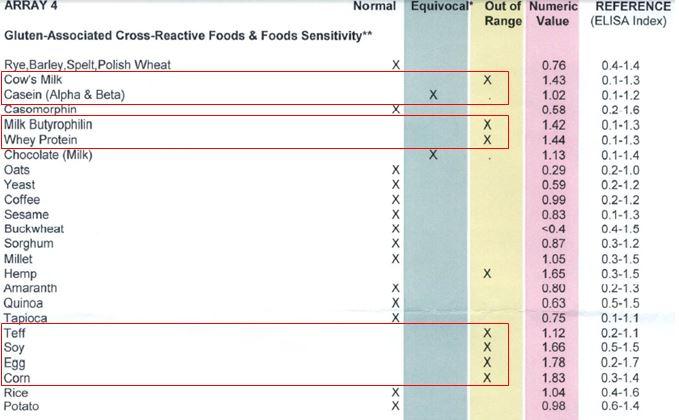 CYREX PANEL - Gluten Associated Cross-Reactive Foods Sensitivity - DR HAGMEYER