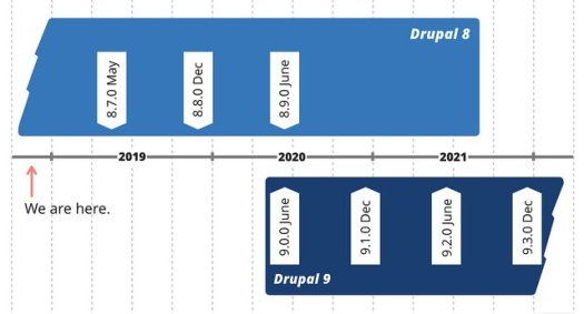 A timeline that shows we hope to release Drupal 9 in June 2020