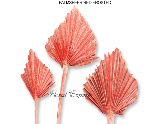 Palmspear Red Frosted