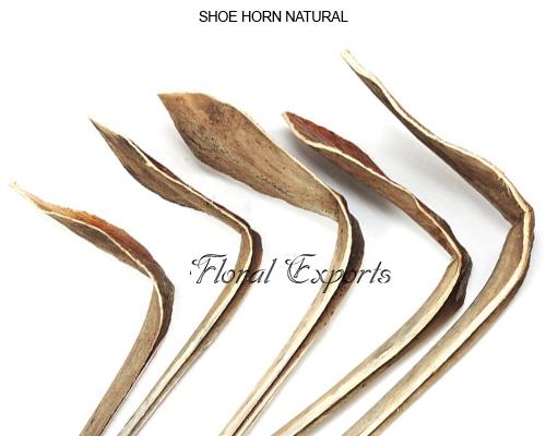 Shoe Horn Natural