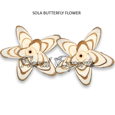 Sola Butterfly Flowers Natural - Sola Eco Flowers