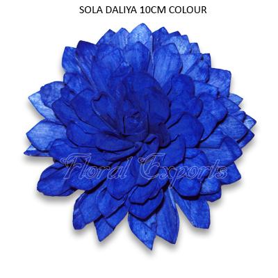 Sola Dahlia Flowers 10cm Colour - Sola Eco Flowers