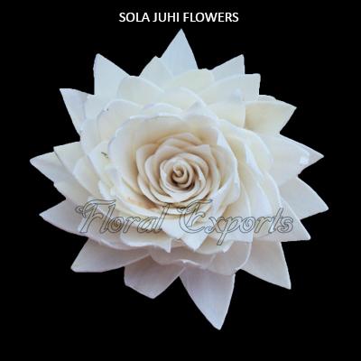 Sola Juhi Flowers 8cm - Bulk Sola Flowers