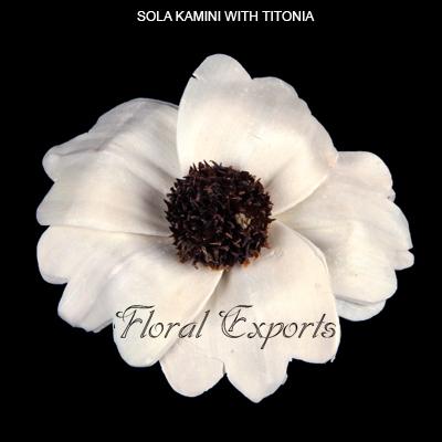 Sola Kamini Flowers with Titonia-Sola Flowers