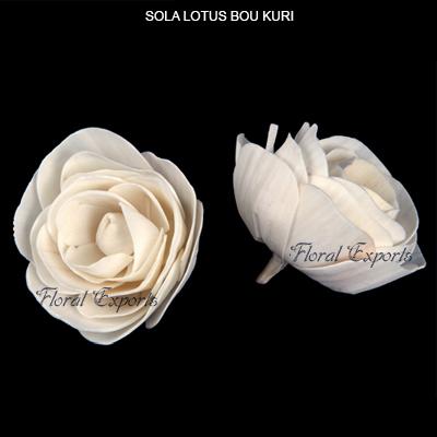 Sola Lotus Bou Kuri Flowers-Sola Flowers Wholesaler