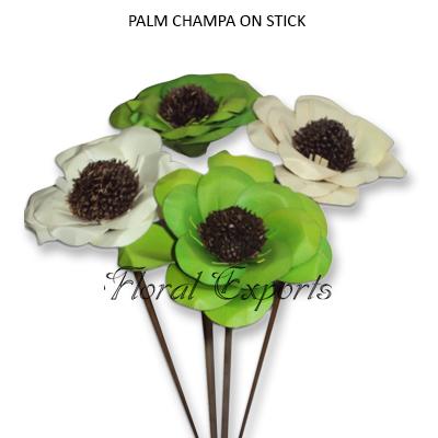 Palm Champa on Stick - Dried Palmflowers Wholesale Suppliers