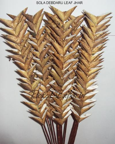 Sola Debdaru Leaf jhar stick