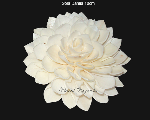 Sola Dahlia 10cm Natural - Bulk Sola Flowers Suppliers