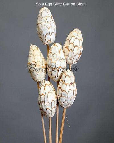 Sola Egg Slice Ball on Stem 5pcs Bunch - Sola Decorative Balls