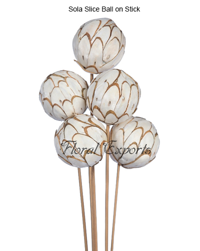 Sola Slice Ball Natural on Stick 5pcs Bunch
