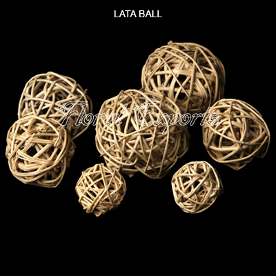 LATA BALL - Munch Balls
