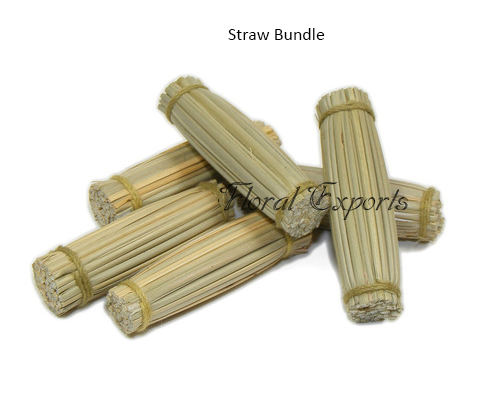 Straw Bundle - Macaw Bird Toys Parts