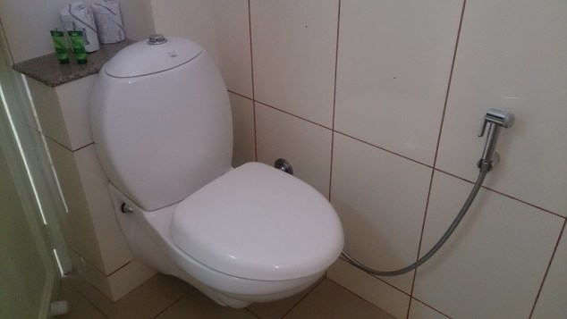 Delhi Travel Tips: Typical Toilet with a Jet of Urban India by Drifter Planet