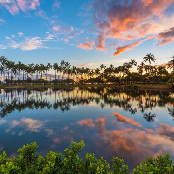 Drifters Guide Hawaii Experience Tour