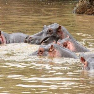 Drifters Guide Kenya adventure safari tour