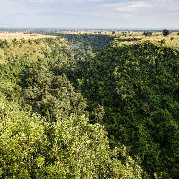 Drifters-Guide-Uganda-Gorilla-Experience-Tour