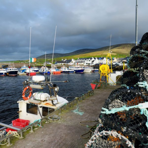 Drifters Guide Ireland Experience Tour