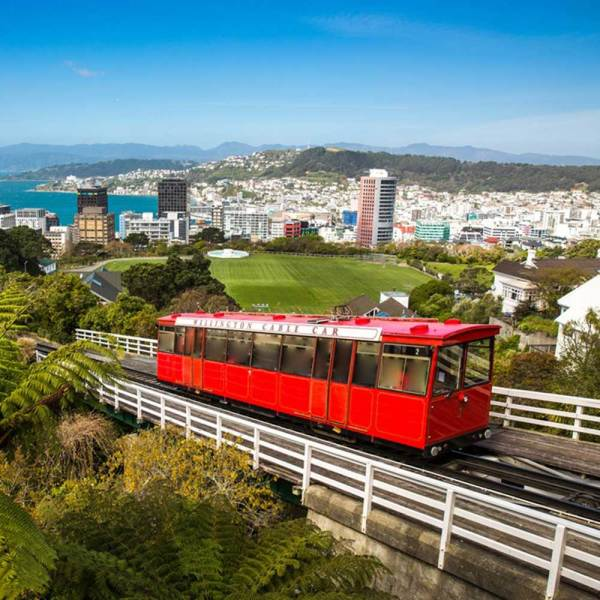 Drifters Guide New Zealand Experience Tour