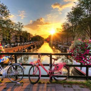 Essential Amsterdam Tour