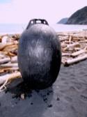 Black Tsunami Float