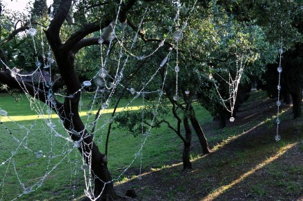 Reflecting Web of the Anthropocene (An Apology to San Francesco), 2013