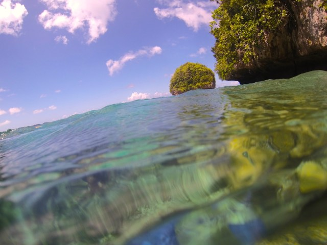 A living fossil~ Palau forges new models for human relationships with nature