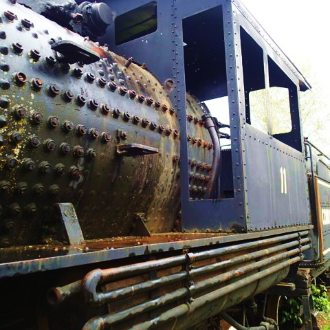 The beauty of the beast. An old Baldwin Logging Locomotive ever so solely returns to the earth it once came from
